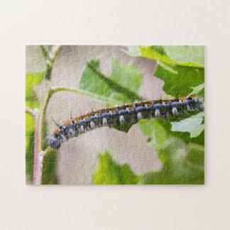 Tent Caterpillar on an Oak Tree Jigsaw Puzzle