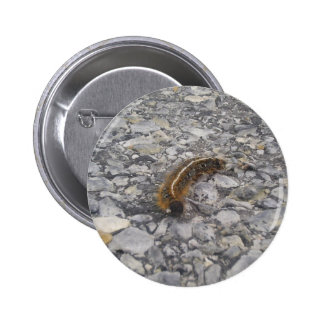 Tent Worm Hurrying Across The Road. Pinback Buttons