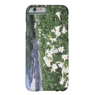 Teppo Yuri (Lily), Yakushima, Kagoshima, Japan Barely There iPhone 6 Case