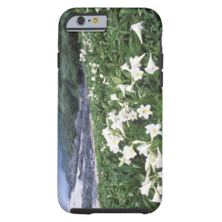 Teppo Yuri (Lily), Yakushima, Kagoshima, Japan Tough iPhone 6 Case