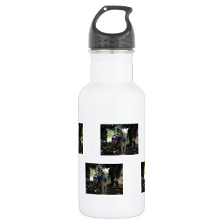 Tequila Donkey 18oz Water Bottle