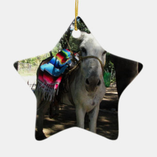 Tequila Donkey Ceramic Ornament