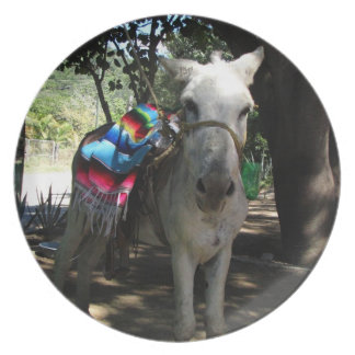 Tequila Donkey Dinner Plates
