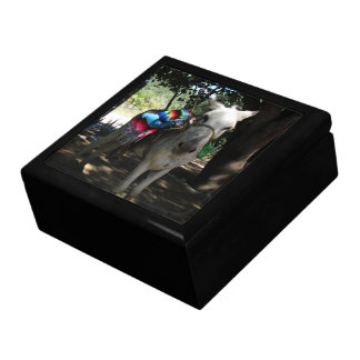 Tequila Donkey Gift Boxes