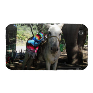 Tequila Donkey iPhone 3 Case-Mate Case