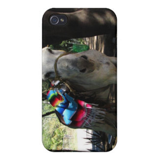 Tequila Donkey iPhone 4/4S Cases