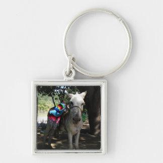 Tequila Donkey Keychains