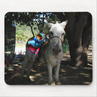 Tequila Donkey Mouse Pad