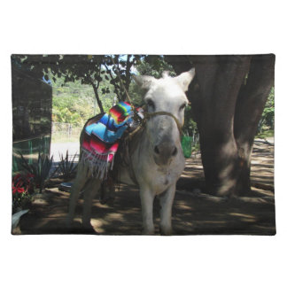 Tequila Donkey Place Mats
