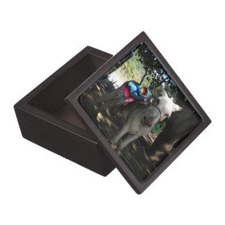 Tequila Donkey Premium Gift Boxes