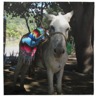 Tequila Donkey Printed Napkins