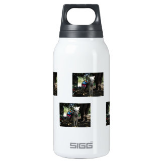 Tequila Donkey 10 Oz Insulated SIGG Thermos Water Bottle