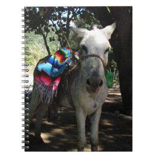 Tequila Donkey Spiral Notebooks