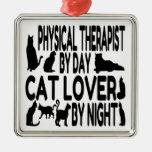 Terapeuta físico del amante del gato ornato