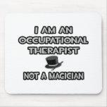Terapeuta profesional… no un mago tapetes de raton
