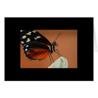 Terapia-Naranja 9 del Notecard-Color Tarjeta Pequeña