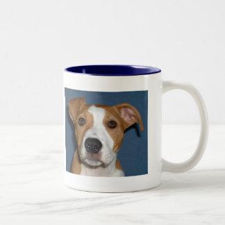 Teras cup