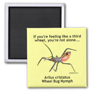Tercer insecto de rueda imán cuadrado