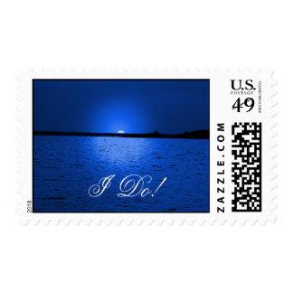Terciopelo azul - sellos