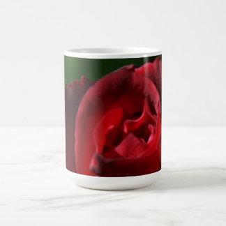 Terciopelo rojo elegante subió taza