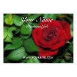 Terciopelo rojo tarjeta de visita
