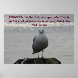 TERDBIRD : A Sea Gull manager, who fl... Poster
