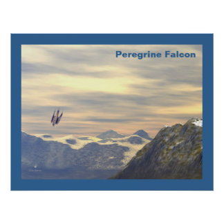 Terminal Velocity Peregrine Falcon Poster