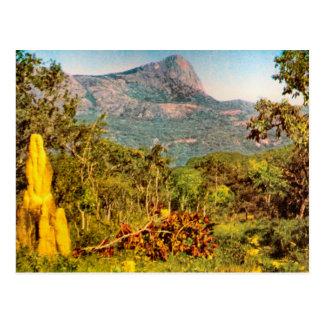 Termite mound, Sierra da Hanba, Angola Postcard
