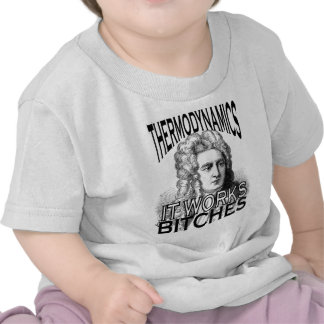 Termodinámica Camiseta