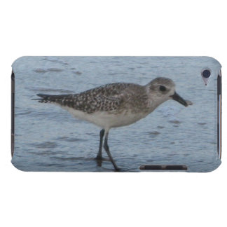 Tern on the Beach iPod Touch Covers