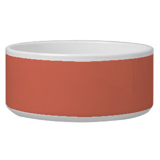 Terra Cotta High End Complementary Color Pet Water Bowl