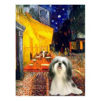 Terrace Cafe - Shih Tzu 3 Post Cards