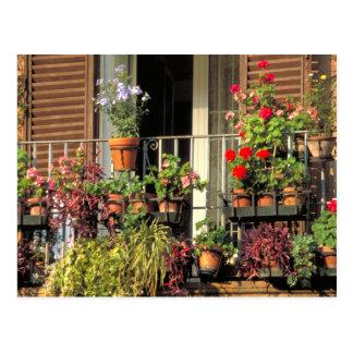 Terrace Garden Rome,Italy Postcard