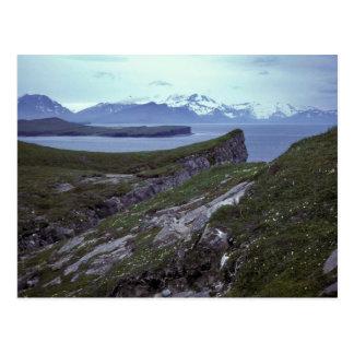 Terrace Island, Wide Bay Postcard