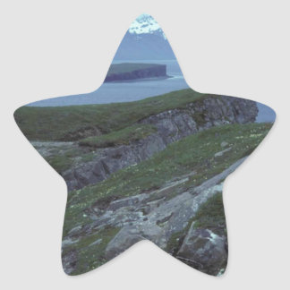 Terrace Island Wide Bay Star Sticker
