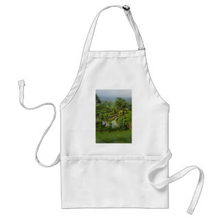 Terrace Ricefield in Bali Adult Apron