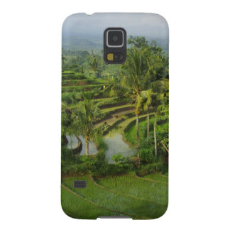 Terrace Ricefield in Bali Case For Galaxy S5