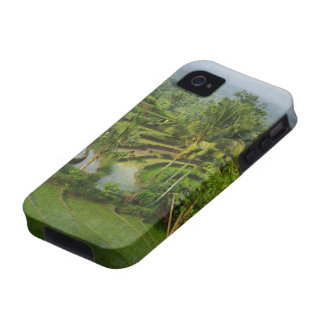 Terrace Ricefield in Bali Vibe iPhone 4 Covers