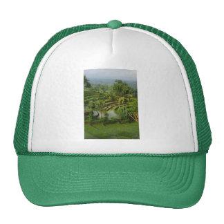 Terrace Ricefield in Bali Trucker Hat