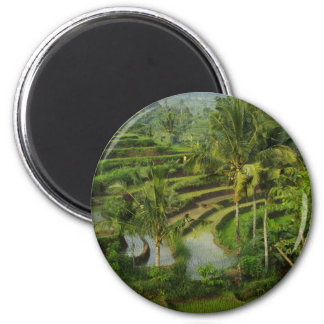 Terrace Ricefield in Bali 2 Inch Round Magnet