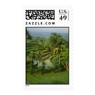 Terrace Ricefield in Bali Postage Stamps