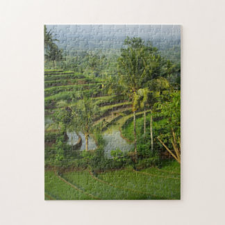Terrace Ricefield in Bali Jigsaw Puzzle