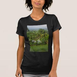 Terrace Ricefield in Bali Tees