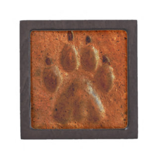 """Terracotta Paw Print"" by Carter L. Shepard"" Gift Box"