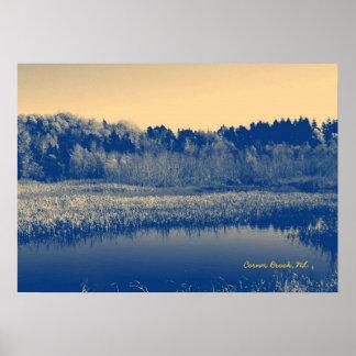 Terranova, Canadá, árboles de las regiones pantano Póster
