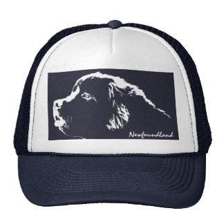 Terranova capsula el regalo de los gorras del aman