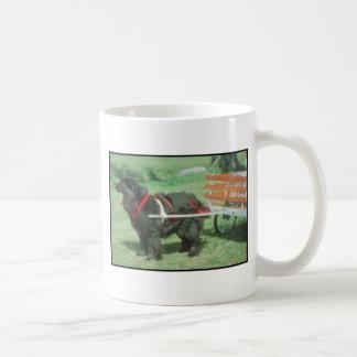 Terranova negro tazas de café