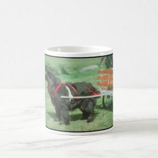 Terranova negro taza
