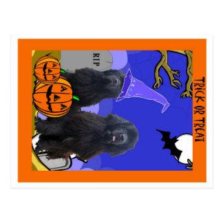 Terranova persigue Halloween Postal