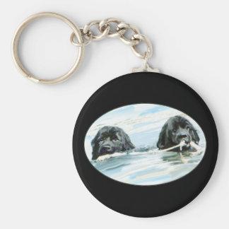 Terranova persigue la natación llaveros